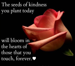 Quotes about seeds of kindness you plant today
