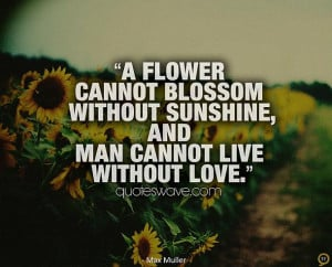 ... cannot blossom without sunshine, and man cannot live without love