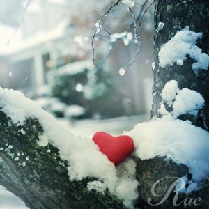 heart, love, snow, tree, white, winter