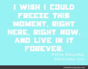 Quote from the famous book and movie The Hunger Games : Catching Fire.