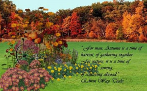 Autumn is a time of harvest #autumn #fall #leaves