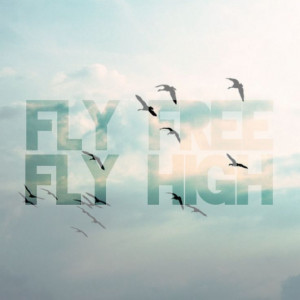 Fly Free Fly High. #quotes