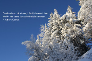 Winter Quotes Picture Wallpaper Detail