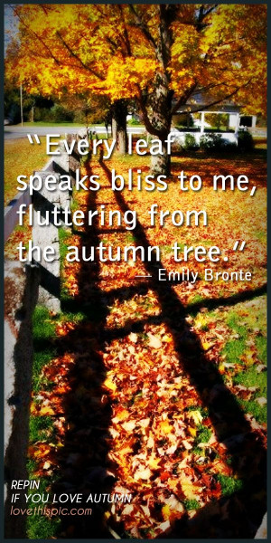 Fall Leaf Pinterest Quotes September Autumn