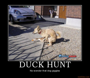 Funny duck hunting jokes