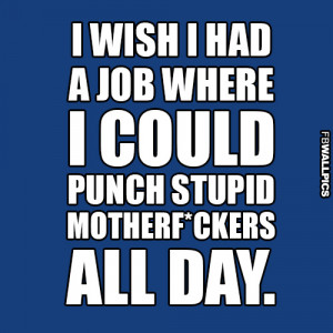 Punching Stupid Motherf ckers Funny Quote Picture