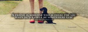 pet dog quotes tumblr a dog slinks off into a corner visit 25 media ...