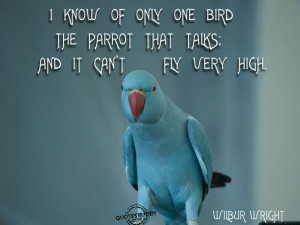 quotes and sayings quotes and sayings caged bird quotes birds quotes ...