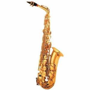 Alto saxophone Picture Slideshow