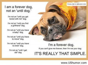 ... Give Me Forever; Than I'm Not Your Dog. It's Really That Simple