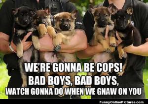 Future cop dogs!
