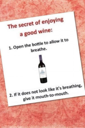 Wine Party humor....to funny!