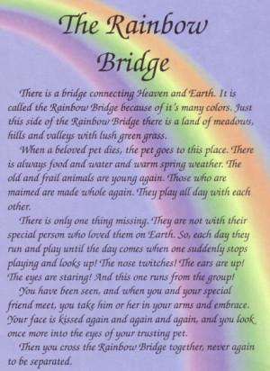 Rainbow-Bridge-Poem-100618792769.png#Rainbow%20Bridge%20Poem