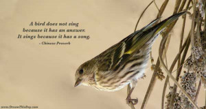 ... it has an answer. It sings because it has a song. - Chinese Proverb