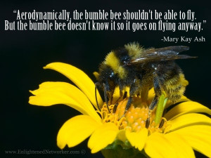 ... bee doesnt know it so it goes on flying anyway. -Mary Kay Ash #quotes