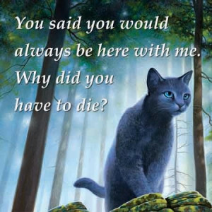 From Warriors: Bluestar's Prophecy.