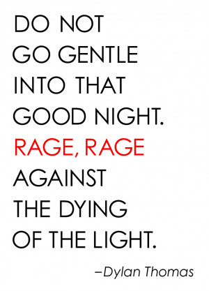 Dont go gentle into that good night essay