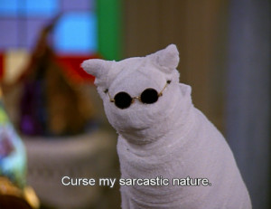 ... cat, funny, glasses, lol, nature, quotes, sabrina, sarcastic, series