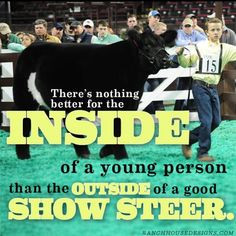 show cattle quotes via taylor adcock more livestock life country girls ...