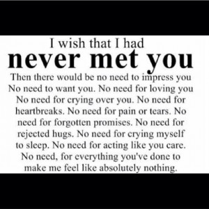 Wish we never met