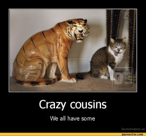 Funny Quotes About Cousins. QuotesGram