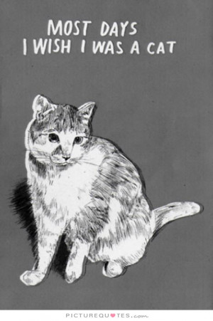 Most Days I Wish I Were A Cat Quote | Picture Quotes & Sayings