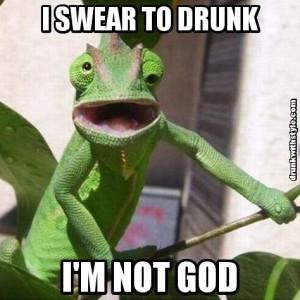 Swear To Drunk I'm Not God Funny Lizard