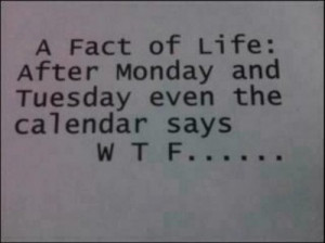 ... of life, cute, friday, funny, hate, monday, saturday, school, thursday