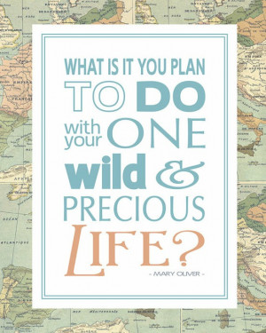 Inspirational Quote: One Wild & Precious Life