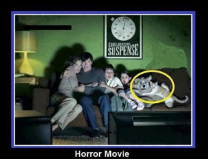 Funny Horror Movie Quotes Funny horror movie quotes