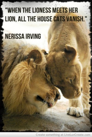 Lion And Lioness Love Quotes Lion Lioness Love Quotes Lion