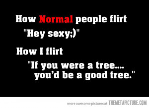 Funny Flirty Quotes Image - Funny -how-to- flirt - quote