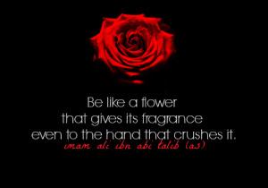 ... ali flower be life a flower crush ali ibn abi talib aliibnabitalib
