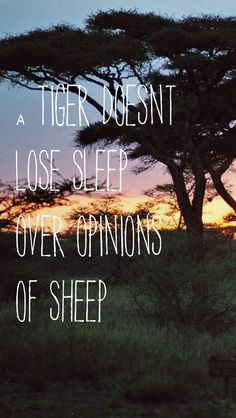 Wallpapers Quotes, Tigersheep Phones, Iphone 5 Wallpapers Quotes ...