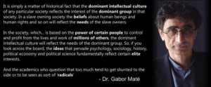 Dr Gabor Mate Quotes