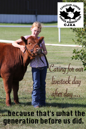 Sayings Quotes, Ffa Member Sayings, Country Girls, Cattle 3, Showing ...
