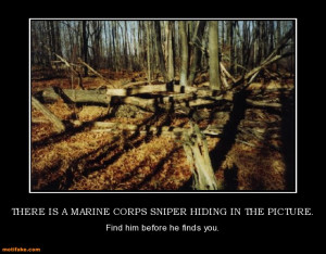 there-is-a-marine-corps-sniper-hiding-in-the-picture-marine ...