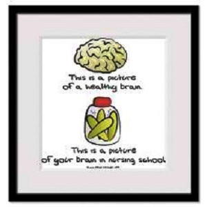 ... Brain,This Is A Picture Of Your Brain In Nurshing School - Funny Quote