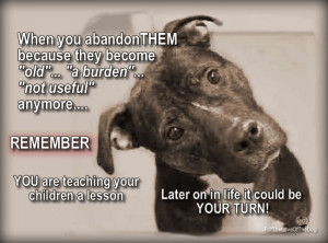 When You Abandon Your Pet….