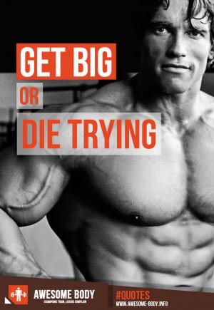 bodybuilding quotes arnold schwarzenegger
