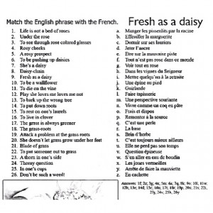 English phrases in French.