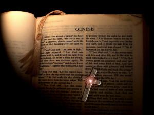 Bible, Christian, Curse, Daily Dose, Fall of Man, Genesis 5 vs 29, God ...