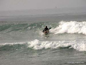shelter surf movie »