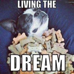 Living_The_Dream