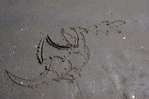 Playing in the Sand...