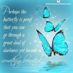 ... butterflies kiss beauty butterflies butterflies quotes grief quotes