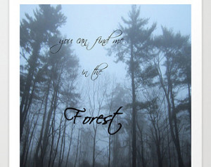 Forest and Fog Giclee Print, winter trees photo, pine trees photo, fog ...