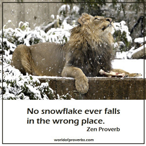 No snowflake ever falls in the wrong place.
