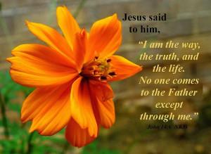 Inspirational Bible Quotes
