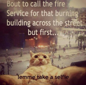 selfie quotes source http imgarcade com 1 funny selfie quotes